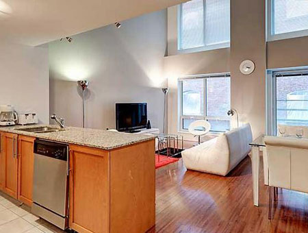 pet friendly montreal apartment rental downtown